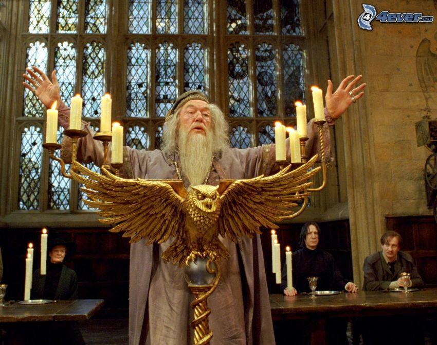 Albus Dumbledore, Harry Potter