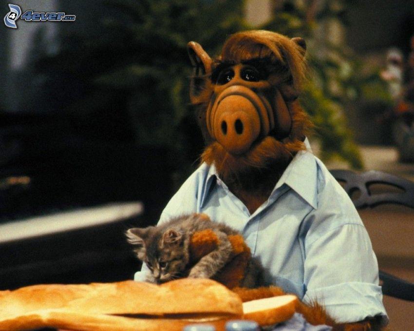 Alf, Katze