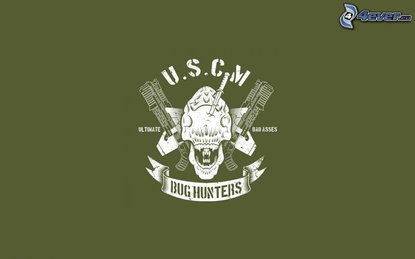 Bug Hunters, logo