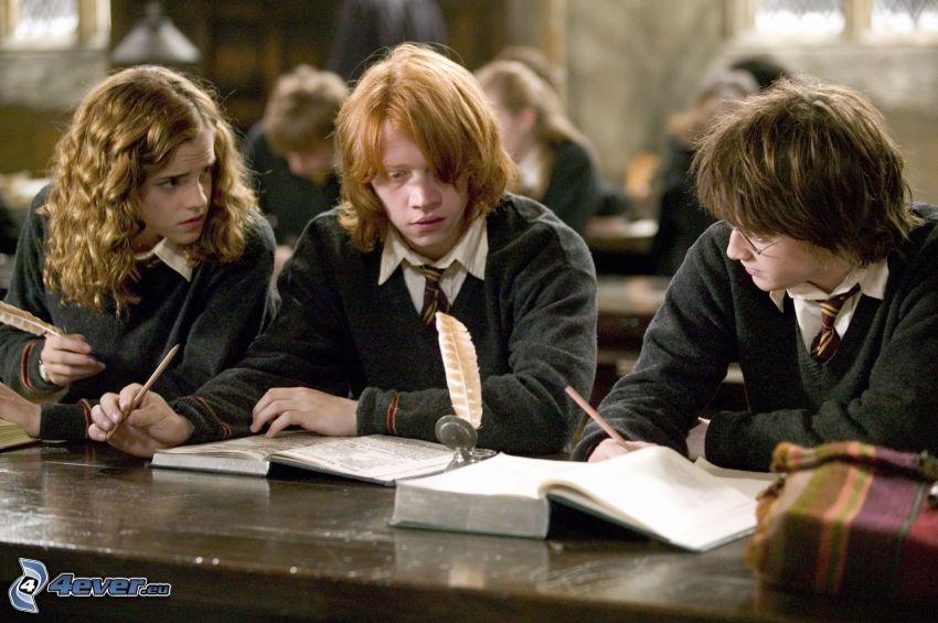 Gryffindor, Hermine Granger, Ron Weasley, Harry Potter