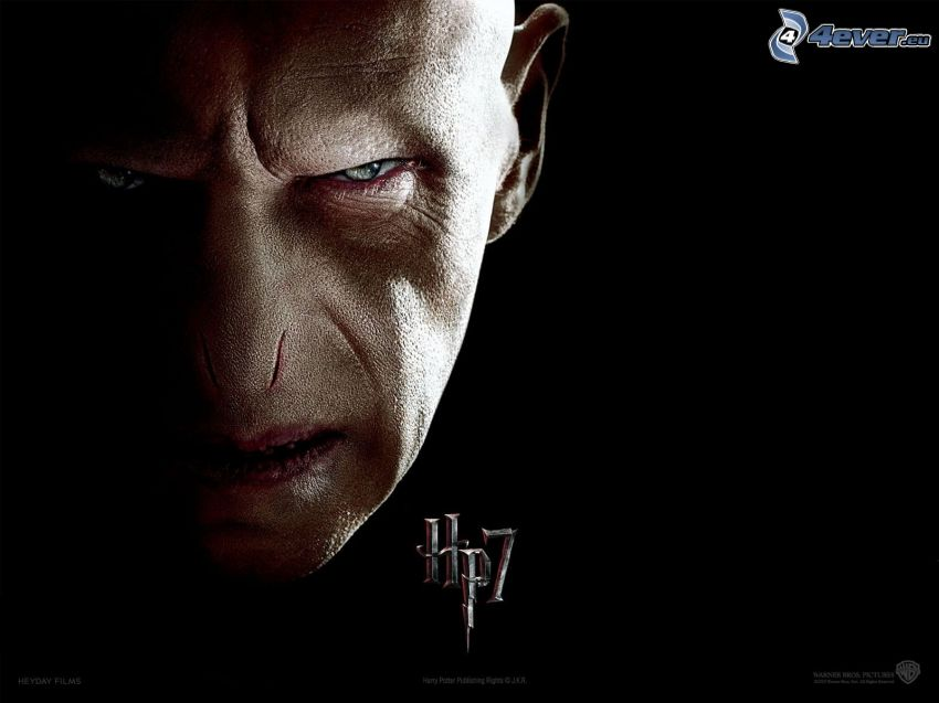 Lord Voldemort, Harry Potter 7