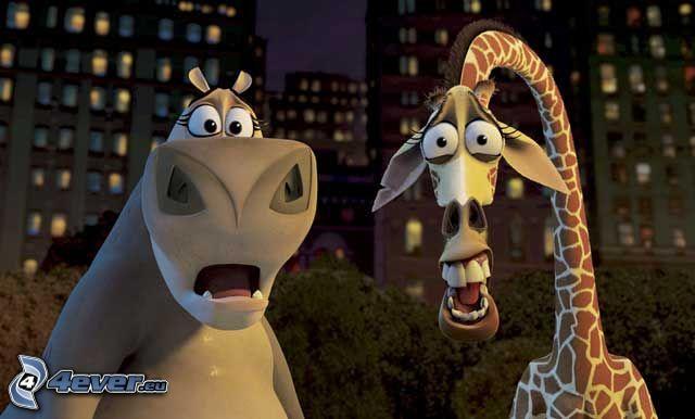 Madagascar, Melman, Gloria