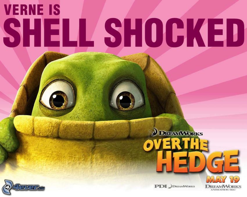 Over the Hedge, Verne, Schildkröte