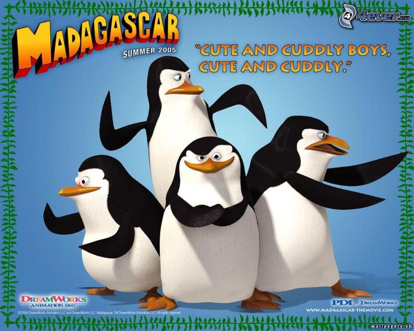 pinguine aus Madagascar, Märchen