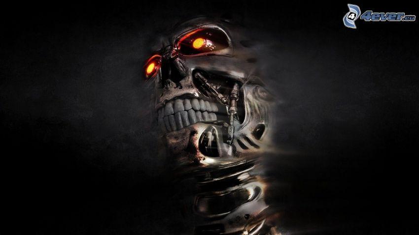 Terminator, Schädel