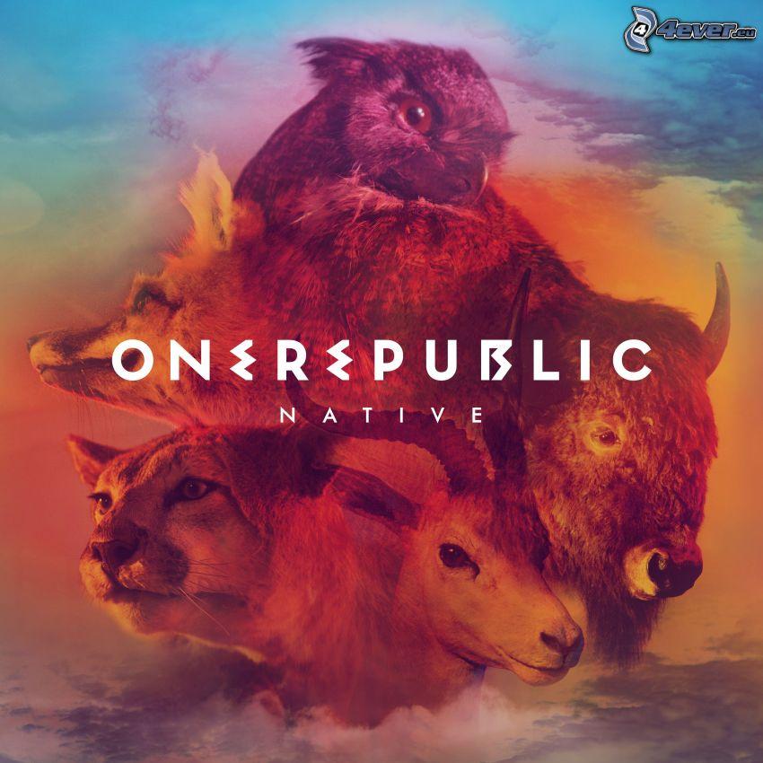 OneRepublic, Tiere