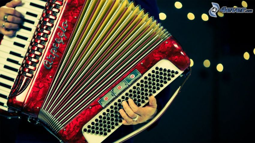 Spielt das Akkordeon