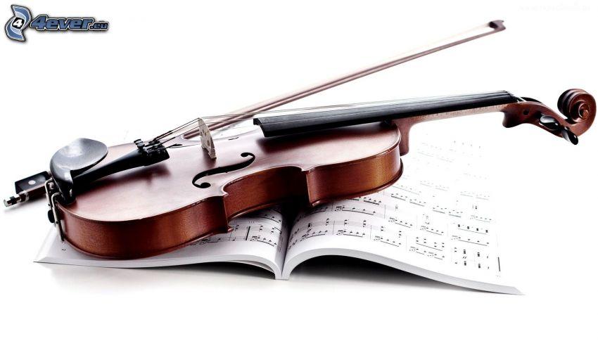 Violine, Noten