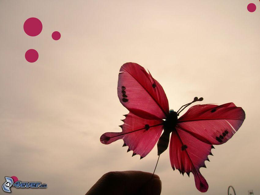 Schmetterling, Gefieder