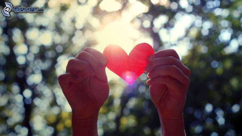 Herz, Hände