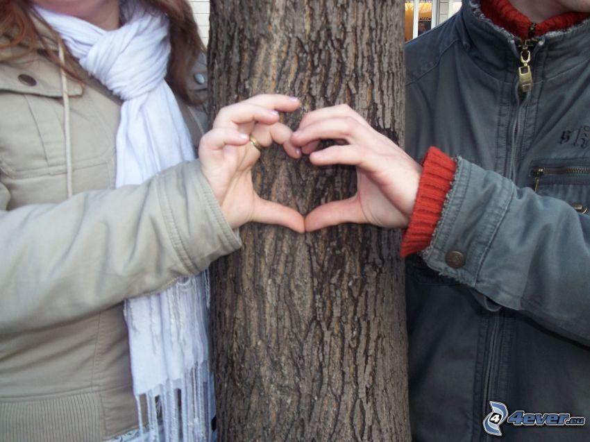 Herz aus den Händen, Paar bei dem Baum
