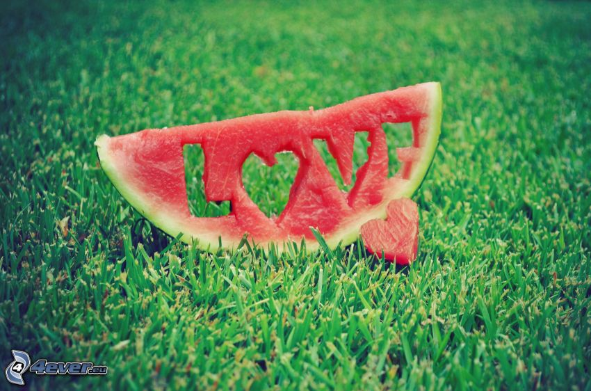 Liebe, Wassermelon, love