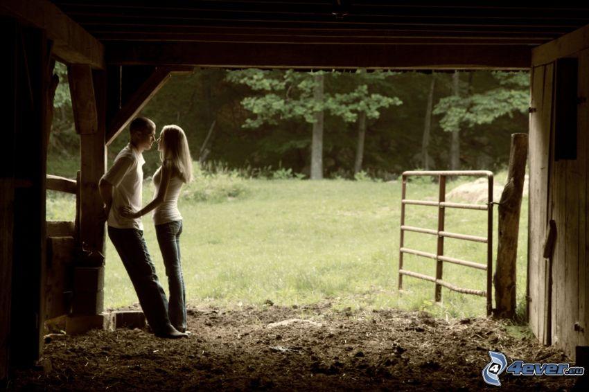 Paar, Wiese, Stall