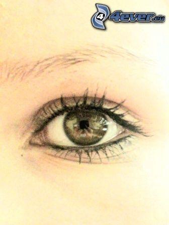 Auge, Augenbraue, Blick