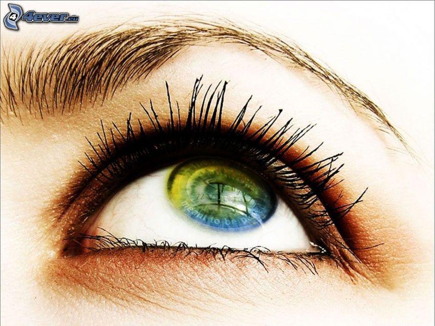 Auge, Spiegelung, Blick