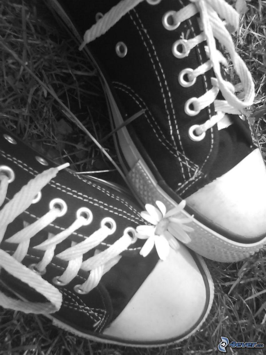 Chinesische Schuhe, Blume, Gras