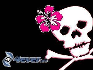 Schädel, Knochen, Sensenmann, Blume