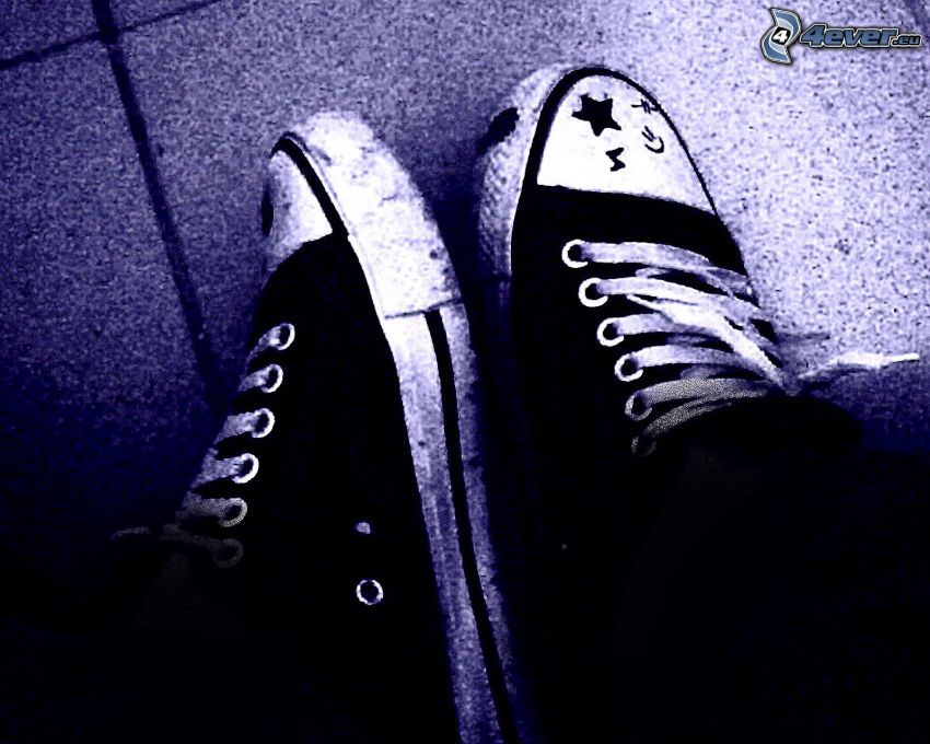 Turnschuhe, Chinesische Schuhe