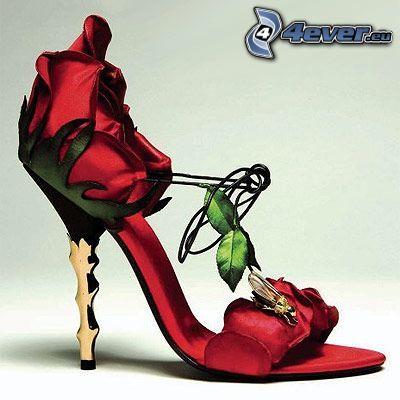 Gesellschaftsschuhe, Schuhe, Rose, Ferse
