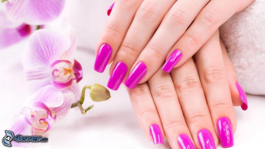 lackierte Nägel, Orchidee