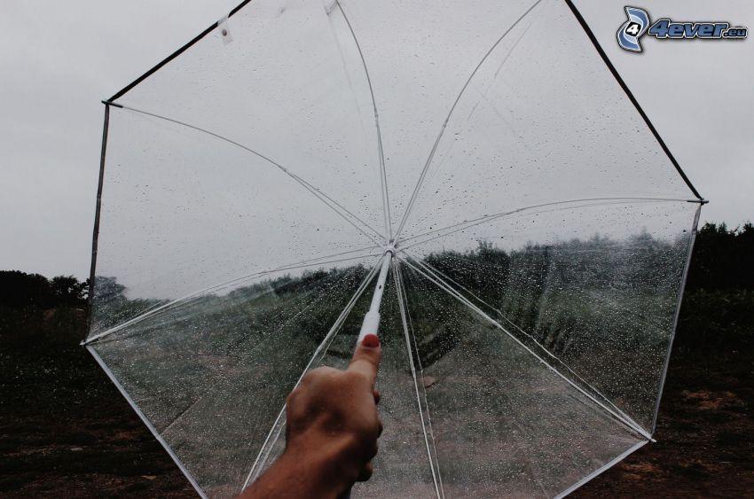 Regenschirm, Hand
