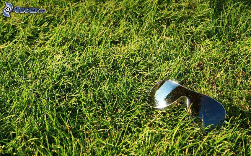 Sonnenbrille auf dem Gras