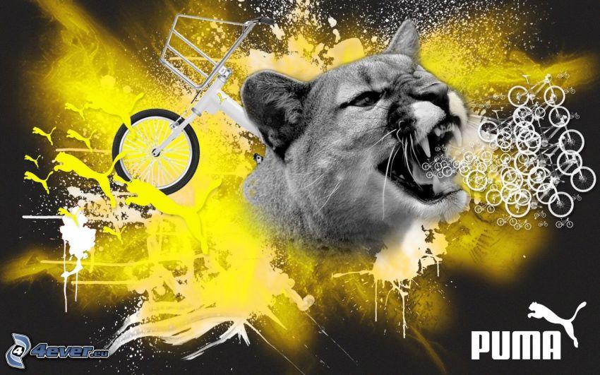 Puma, Fahrräder
