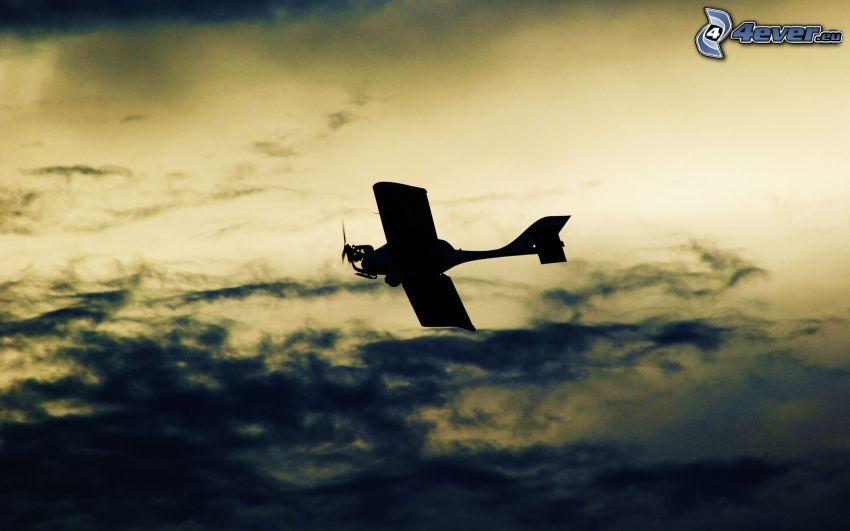 Silhouette des Flugzeuges