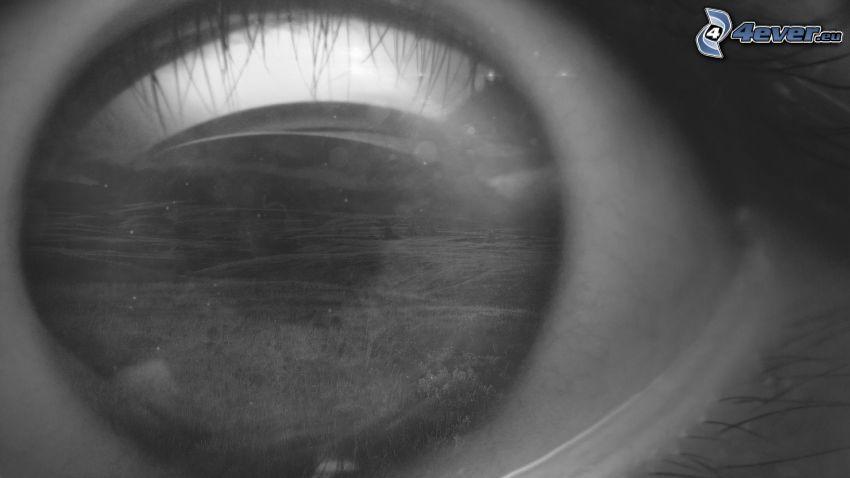 Auge, Schwarzweiß Foto
