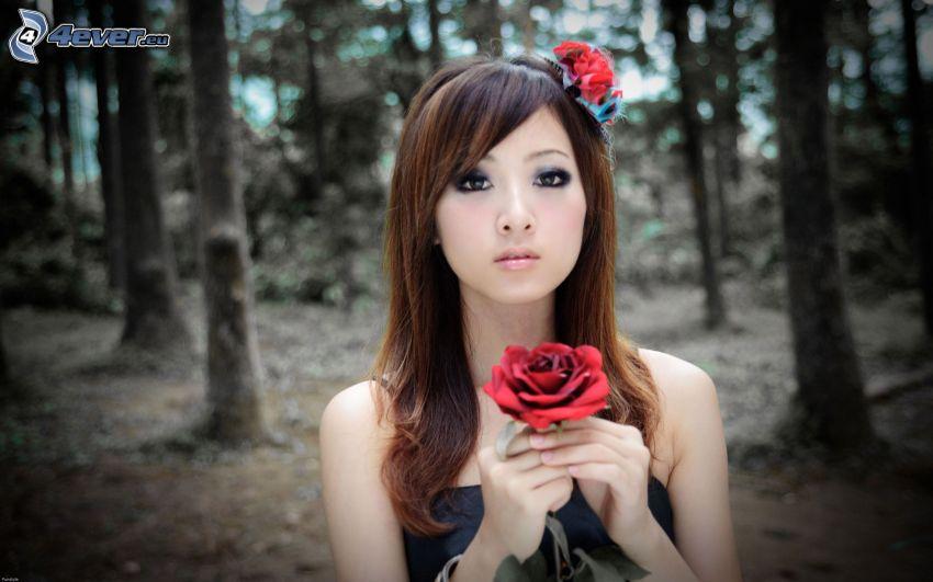 chinesische Frau, Rose, Wald