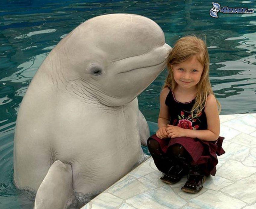 Mädchen, Delfin