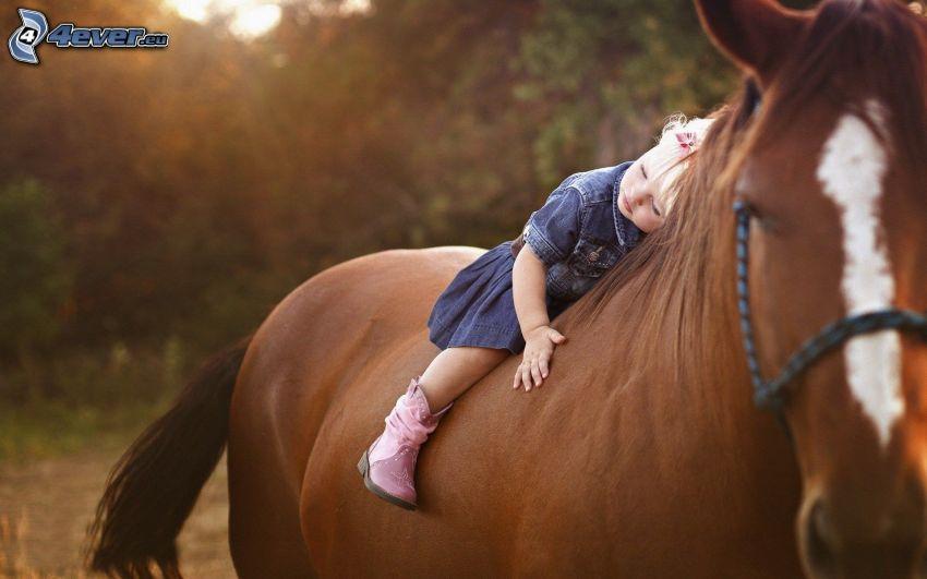 Mädchen auf dem Pferd, braunes Pferd