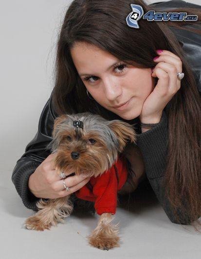 Mädchen, Yorkshire Terrier