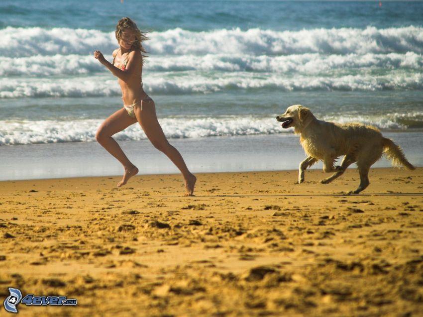 Laufen, Frau, Labrador, Strand