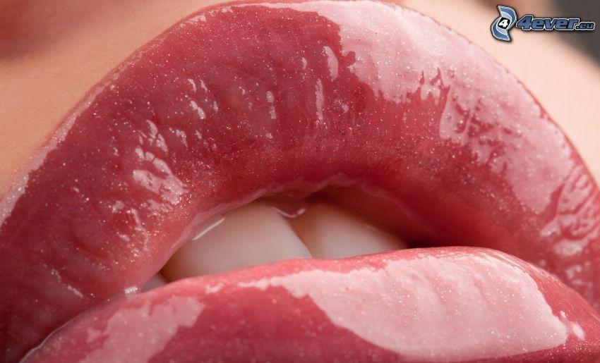 Lippen, Glanz