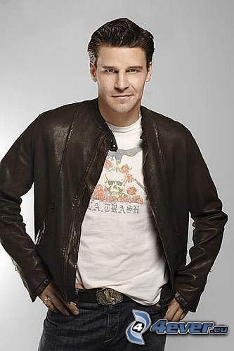 Buffy, David Boreanaz, Seeley Booth