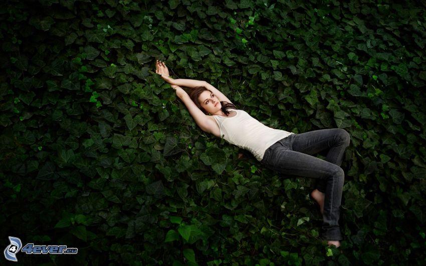 Kristen Stewart, Efeu, Blätter