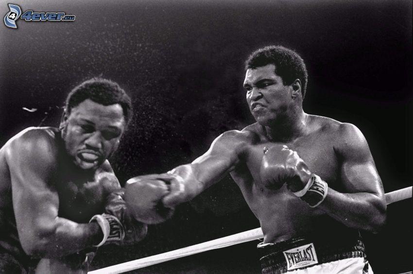 Muhammad Ali, Joe Frazier, wrestling, ringen