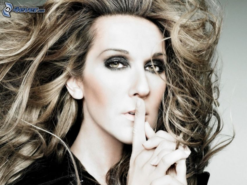 Celine Dion, Stille