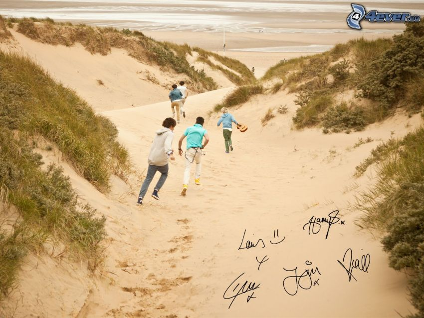 One Direction, Louis Tomlinson, Liam Payne, Niall Horan, Harry Styles, Zayn Malik, Unterschriften