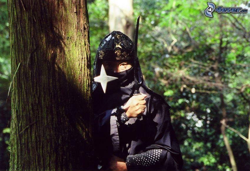 ninja, Wald