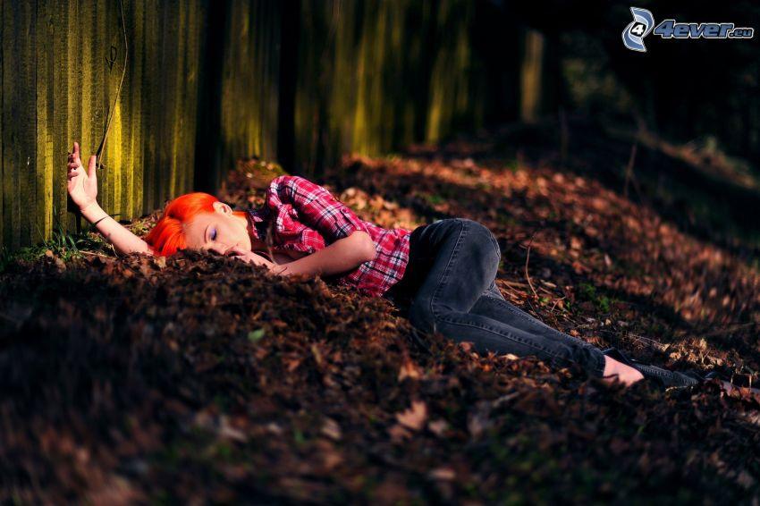 Rotschopf, Schlafen, Blätter