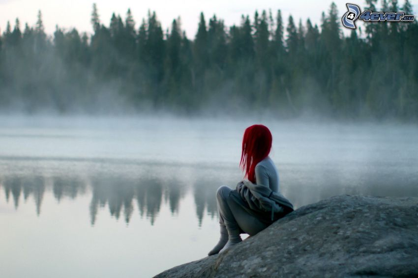 Rotschopf, See im Wald, Boden Nebel