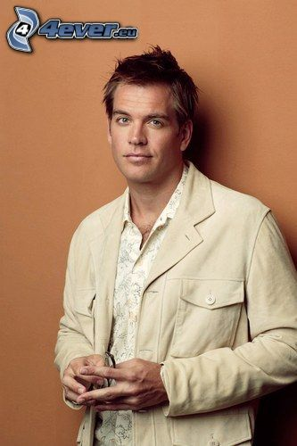 Schauspieler, Michael Weatherly, Tony DiNozzo