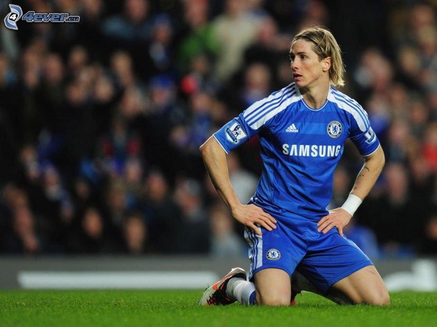 Fernando Torres, Fußballer