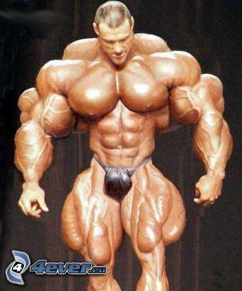 muskulöser Kerl, Bodybuilder