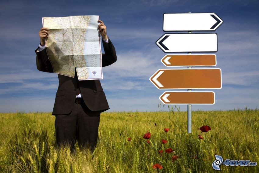 Tourist, Wegweiser, Karte, Wiese