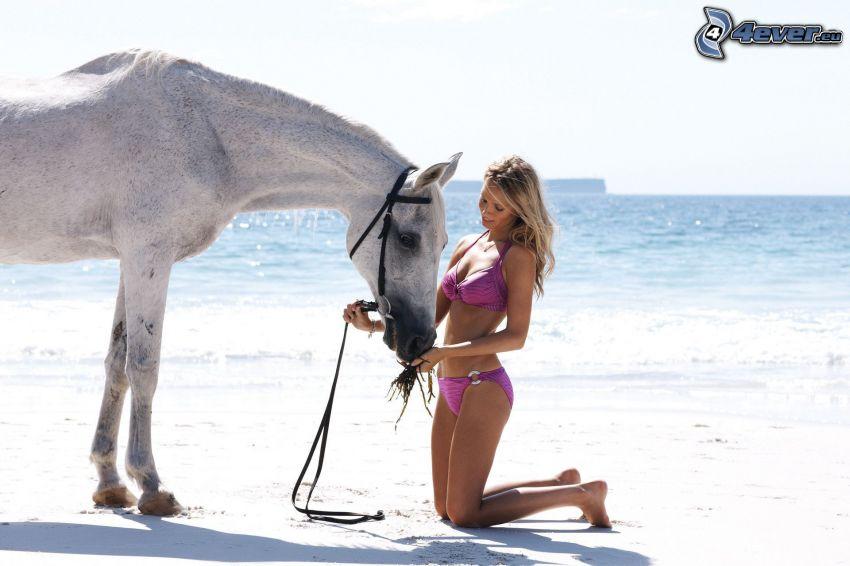 weißes Pferd, Blondine, Strand, Meer