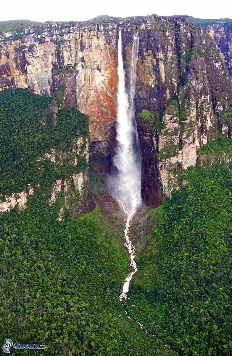 Angel Wasserfall, Klippe, Wald, Venezuela