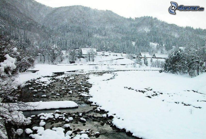 Bach, Schnee, verschneiter Nadelwald